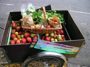 Organic, apples, fruit and veg, bicycle
